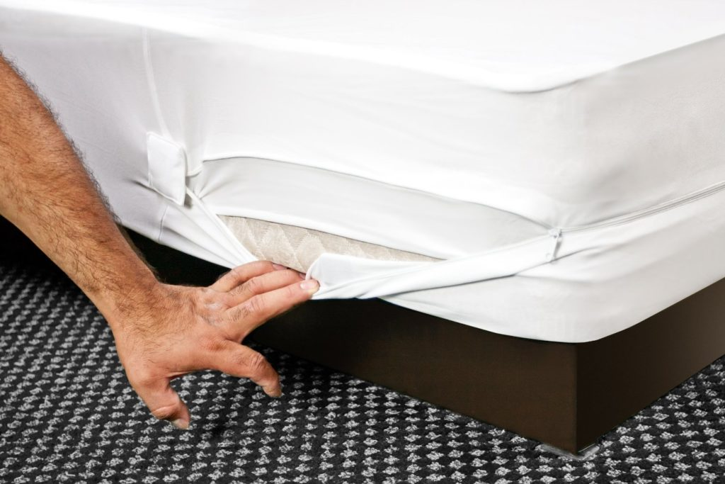 6 Things To Consider Before Buying a Bed Bug Mattress Protector